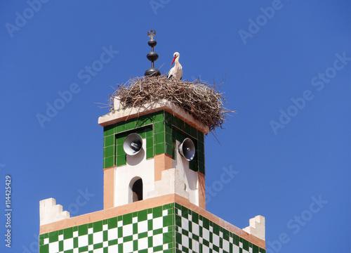 Fotografie, Obraz  Storchennest auf dem Minarett der Moschee von Aït-Ben-Haddou