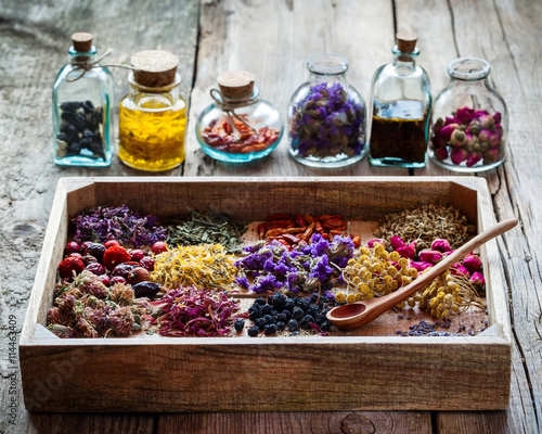 Photo  Healing herbs in wooden box on table and bottles of tincture and
