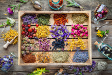 Healing Herbs In Wooden Box On Table, Herbal Medicine, Top View.