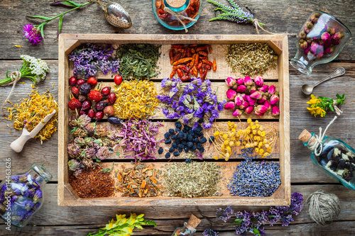 Healing herbs in wooden box on table, herbal medicine, top view. Canvas Print