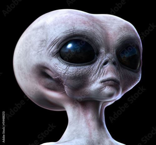 grey alien isolated on black. Poster