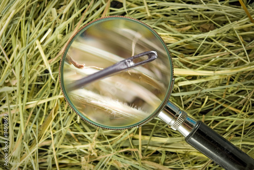 Stampa su Tela image of needle in the hay close up