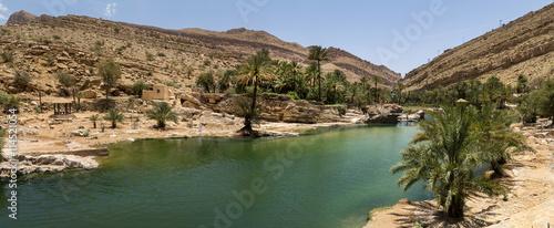 Foto op Aluminium Midden Oosten oasis in the Oman heart