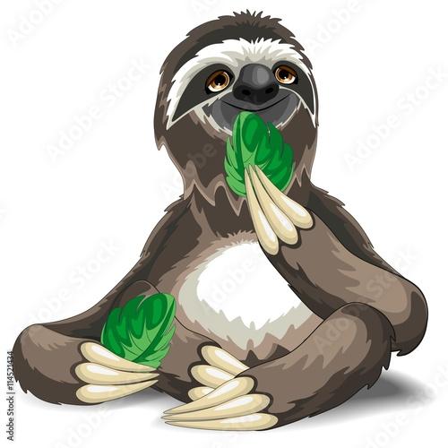 Wall Murals Draw Sloth Cute Cartoon Eating a Leaf