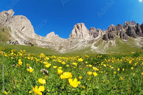 Photo  The Rosengarten mountain