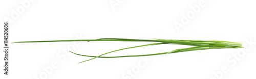 Poster Légumes frais Green onion scallions isolated