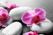 Spa stones and orchids, closeup