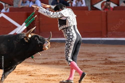Deurstickers Stierenvechten Banderilleros y toro bravo