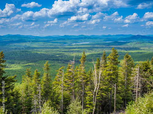 Fotografie, Obraz  Panaroma of Adirondack Mountains