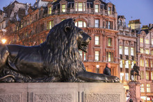 Sculpture Of Lion, Trafalgar S...