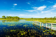 Florida Nature Preserve