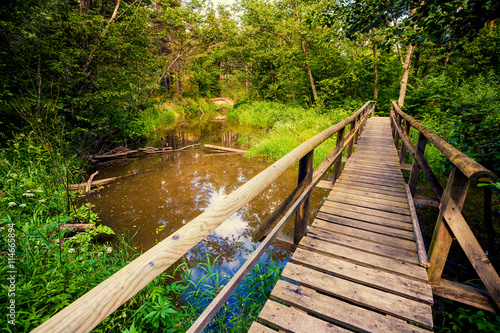 fototapeta na lodówkę Wooden bridge over brook in the forest