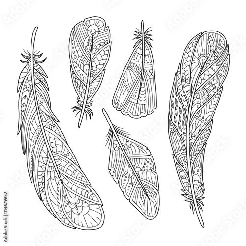 Foto auf AluDibond Boho-Stil Hand drawn vintage feathers set in vector. Adult coloring page. Decorative element for T-shirt emblem, tattoo, logo. Black and white zentangle boho feather.