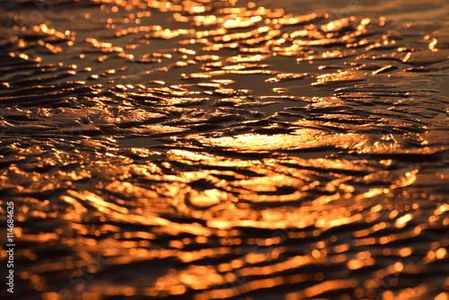 Valokuva  Nordseeküste im Fokus, Momente am Meer, im Watt, am Deich