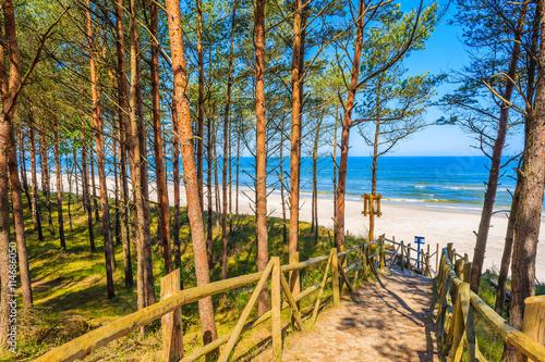 Foto op Canvas Weg in bos Path in forest to beautiful beach in Lubiatowo coastal village, Baltic Sea, Poland