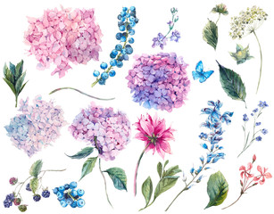 Obraz Set vintage watercolor elements of Hydrangea