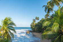 Wild Caribbean Beach Of Manzan...