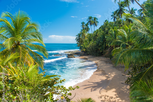 Wild caribbean beach of Manzanillo at Puerto Viejo, Costa Rica Canvas Print
