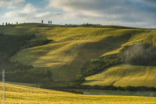 Spoed Fotobehang Rijstvelden Tuscan countryside