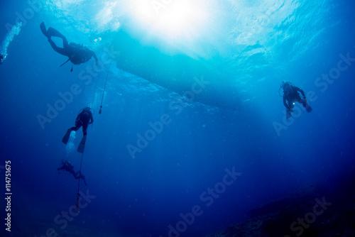 Fotobehang Duiken Diver