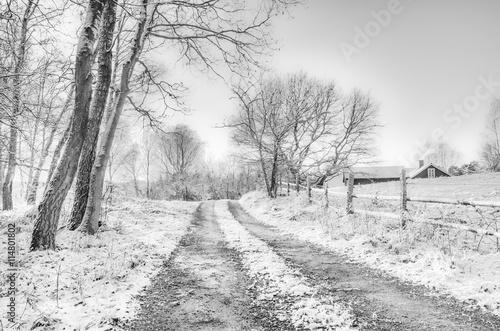 Snow covered rural scene Poster