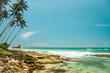 Nature of Asia: Sri Lanka. Sunny ocean beach.