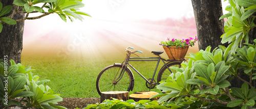 Deurstickers Fiets Old bicycle in the park