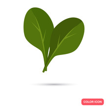 Spinach Color Flat Icon