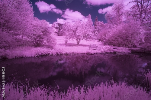 Photo Stands Eggplant Stunning infrared alternative color landscape image of trees ove