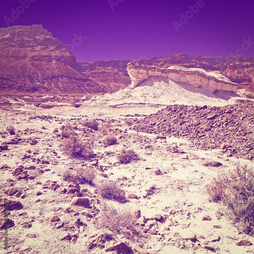 Spoed Foto op Canvas Violet Evening in Desert