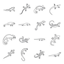 Lizard Icons In Outline Style....