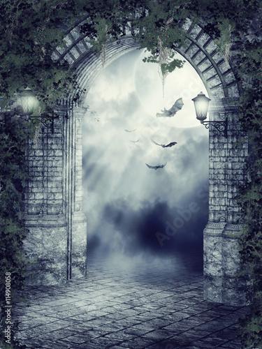 Fotografia Stara gotycka brama z nietoperzami nocą