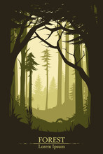 Forest Illustration Background