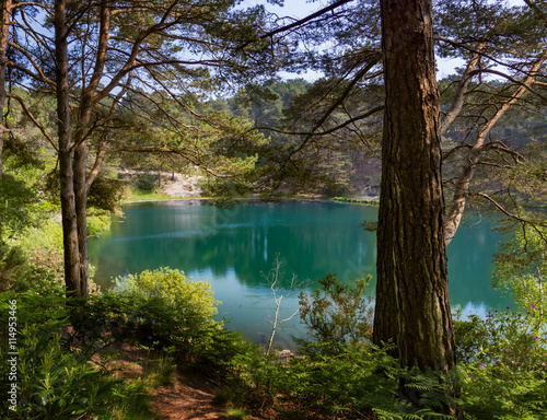Deep green lake at bluepool, Dorset