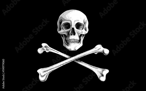 Photo  Vector Pirate Flag