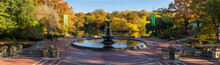 Sunrise In Central Park At Bet...