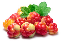 Pile Of Cloudberries (Rubus Chamaemorus)
