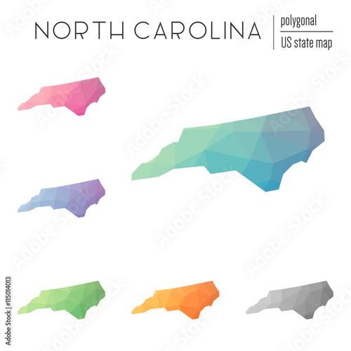 Fotografie, Obraz  Set of vector polygonal North Carolina maps