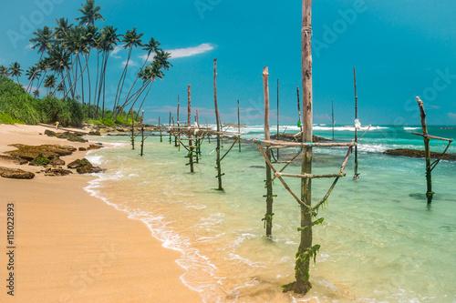 Fototapeta Nature of Asia: Sri Lanka. Sunny ocean beach.