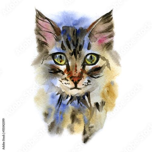 akwarelowy-kot