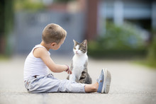 Child Talks To The Cat In The Street