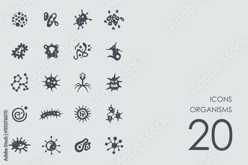 Fotografie, Tablou  Set of organisms icons