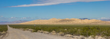 Panorama Of Kelso Sand Dunes I...