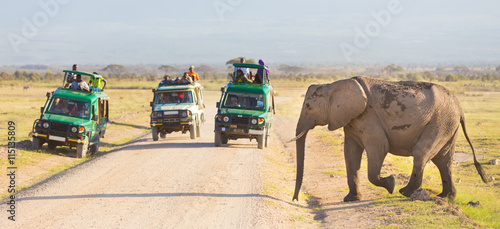 obraz lub plakat Tourists in safari jeeps watching and taking photos of big wild elephant crossing dirt roadi in Amboseli national park, Kenya. Panorama.