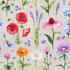 Fototapeta Kwiaty Wild flowers illustrations. Watercolor seamless pattern
