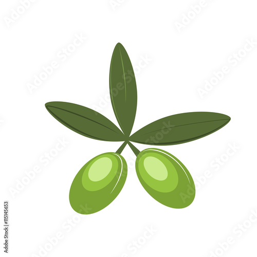 Olive Vector Icon Olive Oil Symbol Sign Branch Buy This Stock