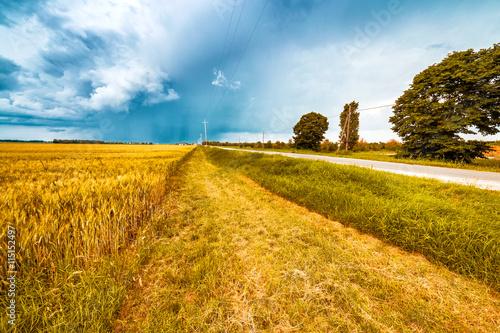 Foto op Aluminium Blauw fields of Italy