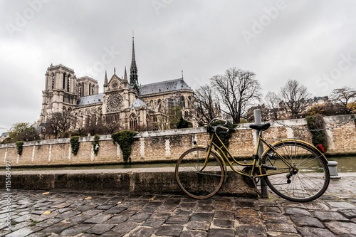 Foto op Plexiglas Fiets Holiday in France - Notre-Dame Cathedral during winter Christmas