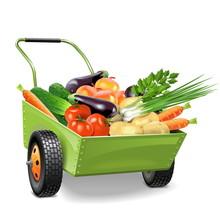 Vector Wheelbarrow With Vegetables
