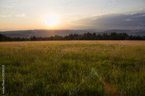 Fotobehang Platteland Sunset in Grassy Meadow